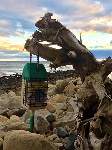 Lobster Buoy Suet Feeder